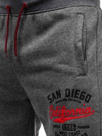 Spodnie dresowe męskie grafitowe Denley 55060